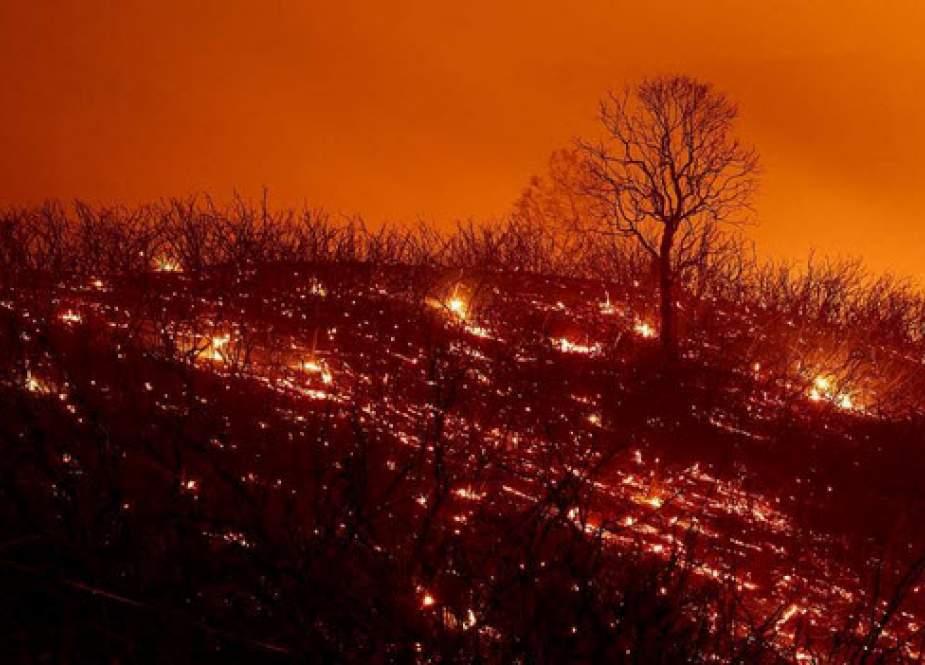 دوزخ در کالیفرنیا؛ بزرگترین آتشسوزی تاریخ آمریکا به روایت تصاویر