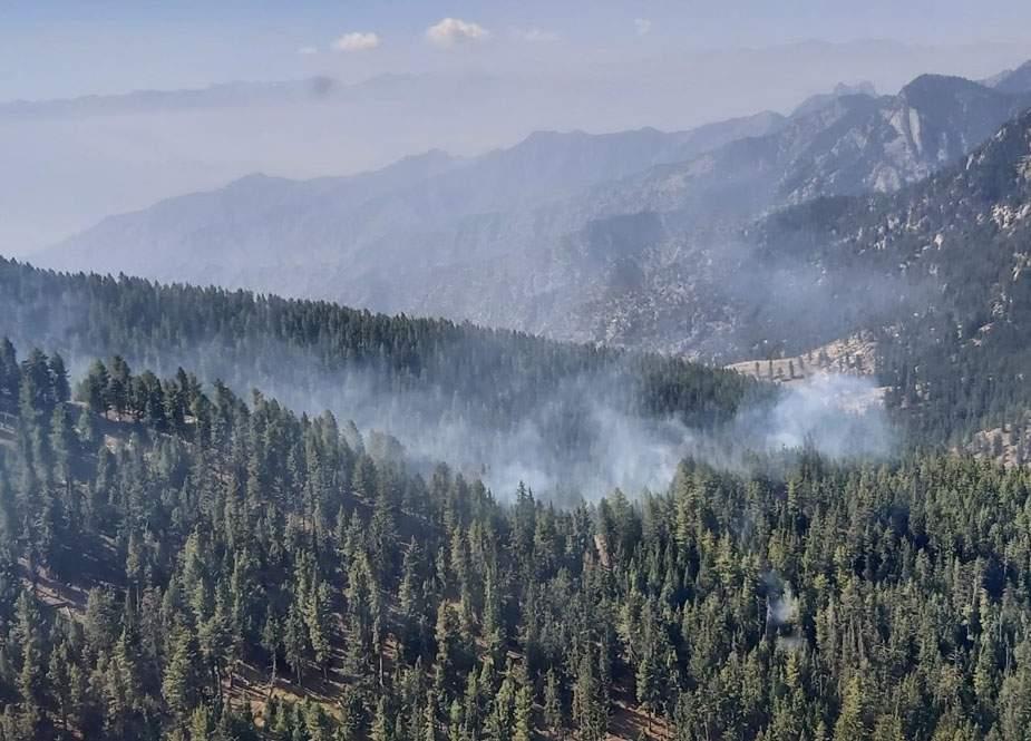 دیامر، کھنبری کے جنگلات میں لگنے والی آگ بےقابو ہو گئی