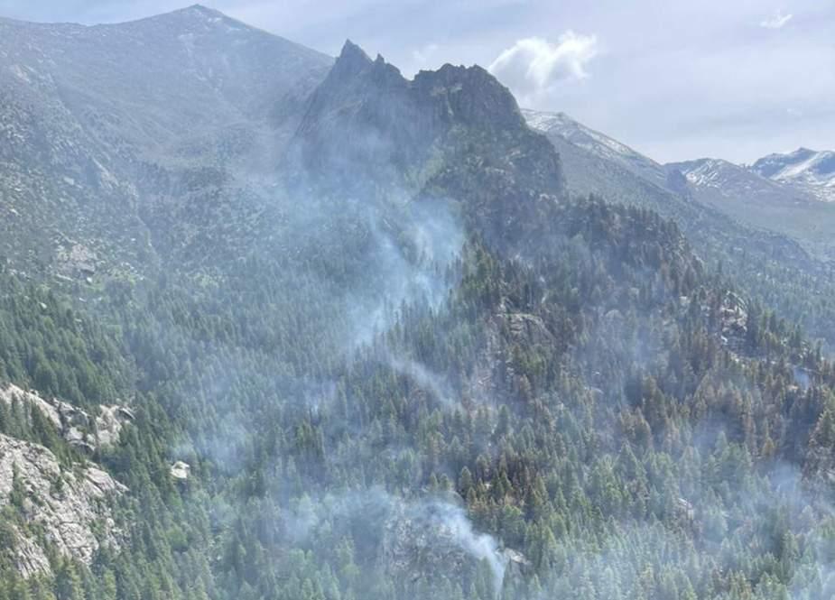 دیامر کے جنگلات میں لگی آگ پر قابو پا لیا گیا