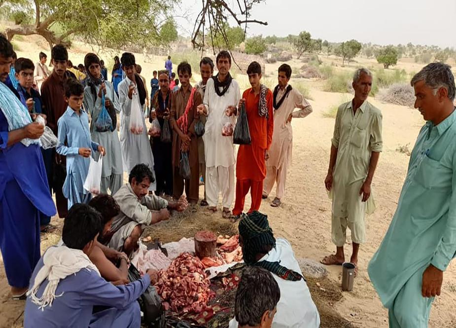 شیعہ علماء کونسل پاکستان اور زہرا اکیڈمی کراچی کے تحت اجتماعی قربانی کے مناظر
