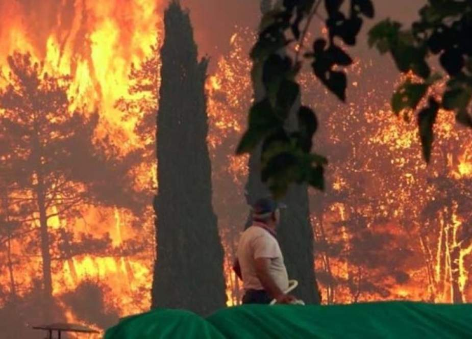 عشرات الإصابات بحريق غابات كبير جنوب تركيا
