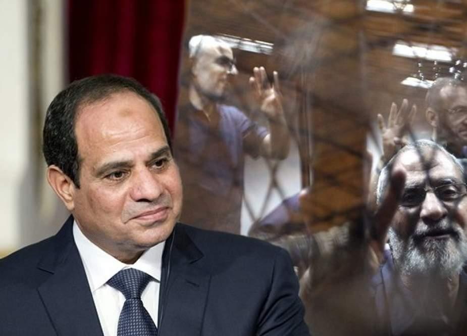 قرار الرئيس المصري بفصل موظفي الإخوان.. الأسباب والنتائج