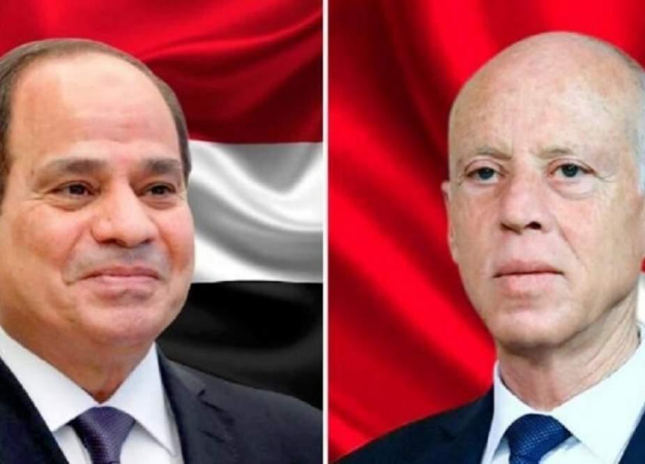 مصر تؤكد دعمها لتونس