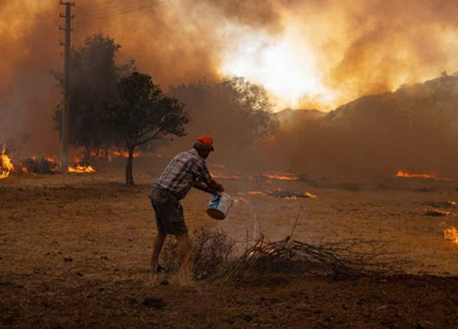 الرئيس الجزائري يعلن الحداد 3 أيام على أرواح ضحايا الحرائق