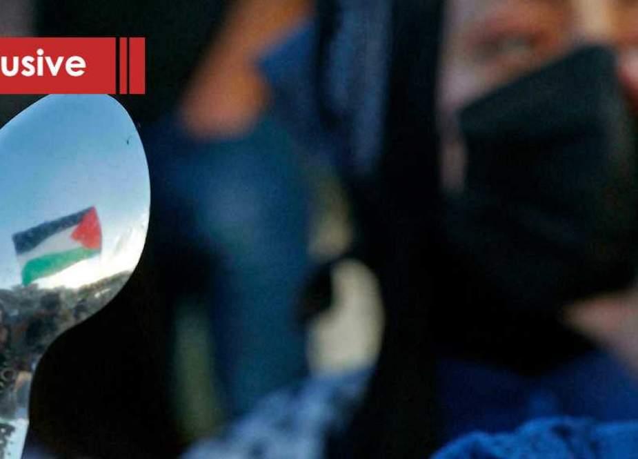 Spoon of Palestinians demonstrator.jpg