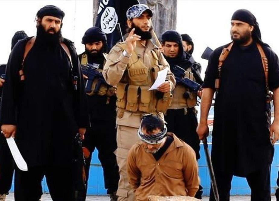 آلِ امیہ کی داعش اہلبیت رسول کے مقابل