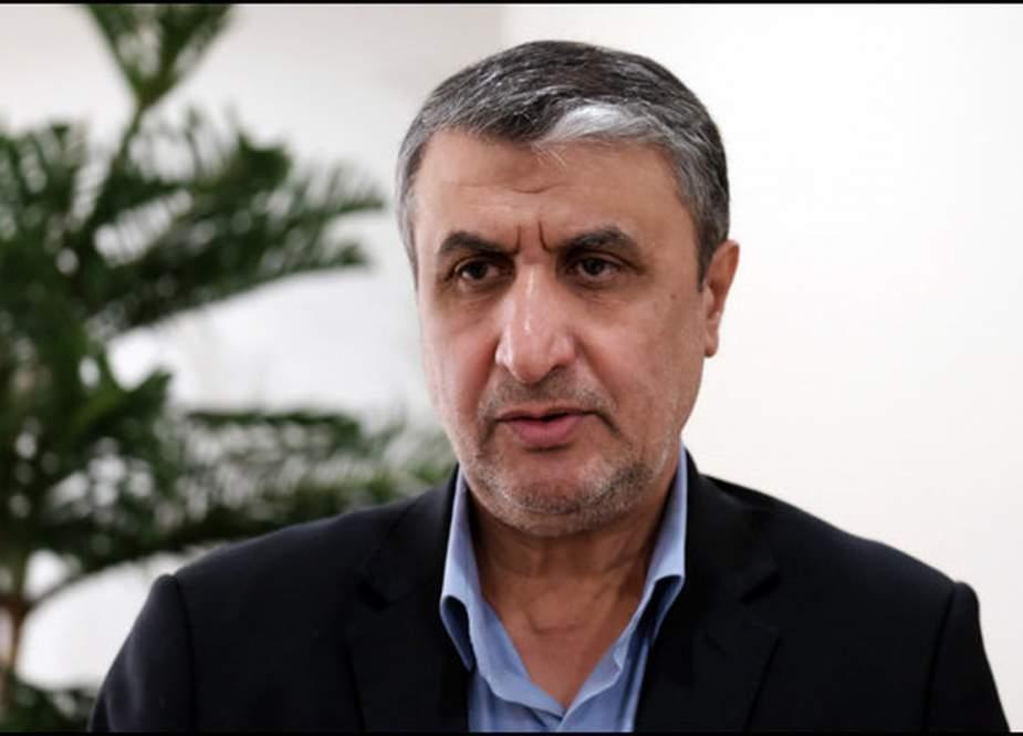رئيس منظمة الطاقة الذرية الإيرانية يصل إلى فيينا
