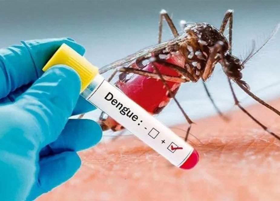 بھارت میں ڈینگی بخار کی وبا، 114 افراد ہلاک