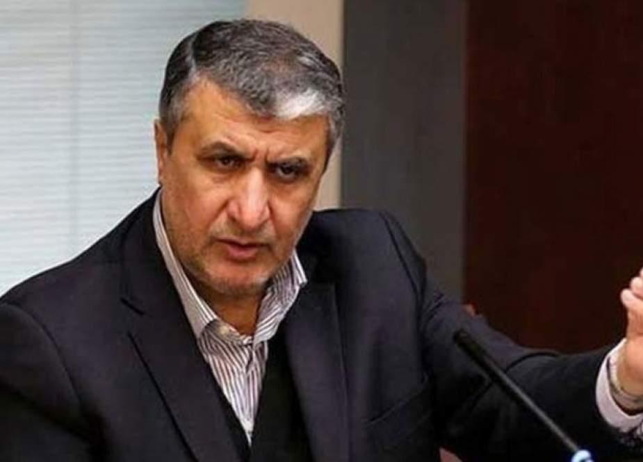 رئيس منظمة طاقة ايران الذرية: سياسة الضغوط القصوى ستفشل