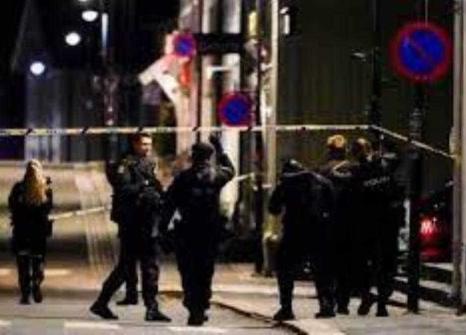 ناروے، تیر کمان بردار شخص کا حملہ، 5 افراد ہلاک